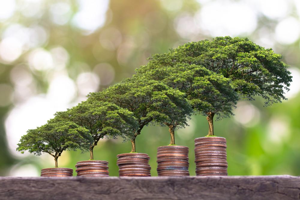 growing-money-trees
